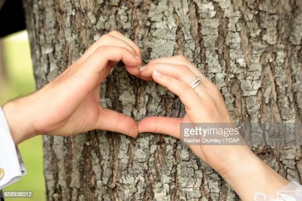 Couple making heart shape near tree trunk