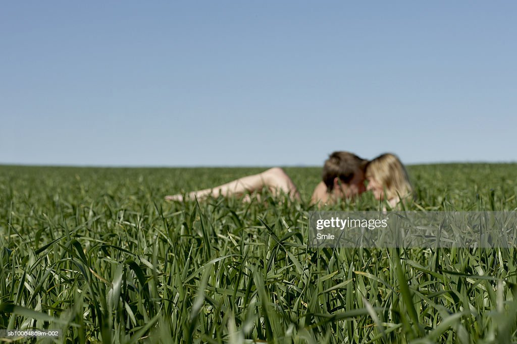 Couple making love in field, focus on foreground : Stock Photo