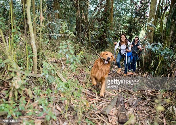 Couple mountain climbing with their dog