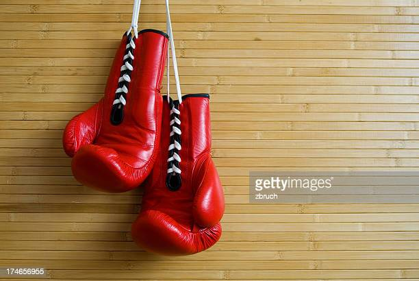 couple of boxing gloves