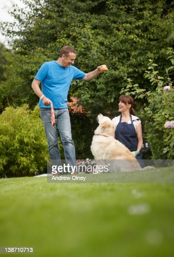 Couple playing with dog in backyard : Stock Photo