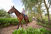 A couple rides horses on a wooded trail