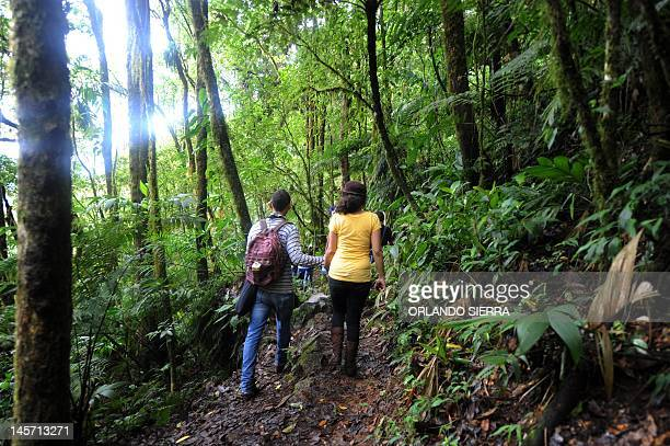 A couple stroll along a track at La Tigra National Park 40 km northeast of Tegucigalpa on June 3 two days before the celebration of the World...