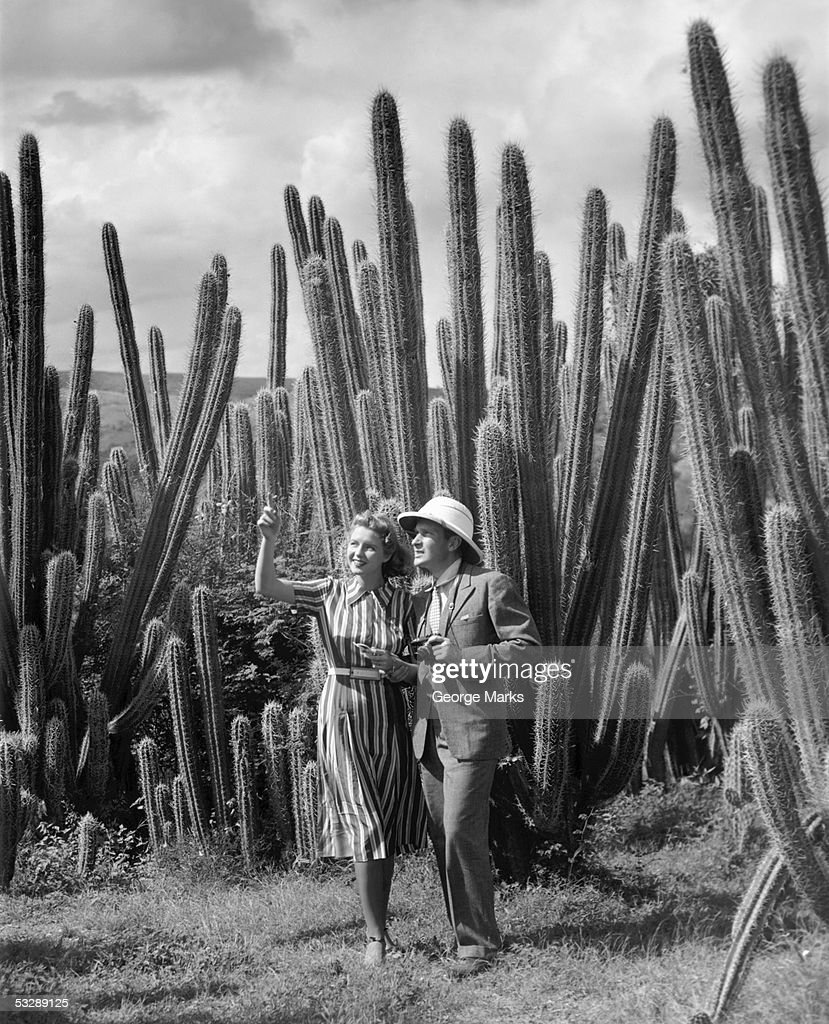Couple taking pictures of cactus : Stock Photo