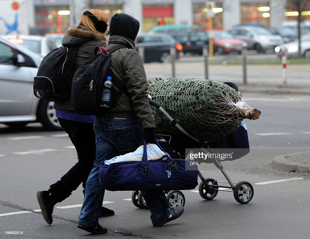 A couple transports a christmas tree in a stroller in Berlin on December 21, 2012.