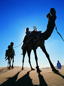 Couple Travelling Across the Desert on Camel With a Man Wearing Traditional Middle Eastern Dress