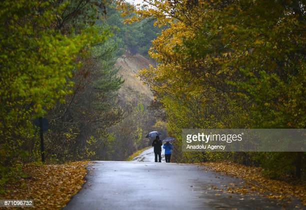 A couple walk on the road surrounded by yellowed trees on a chilly autumn afternoon at the Eymir Lake in Ankara Turkey on November 06 2017