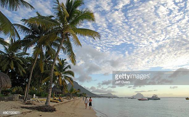 A couple walk past the coconut palms that line the beach at Flic en Flac on the island of Mauritius Tree palm palms tropic tropics tropical holiday...