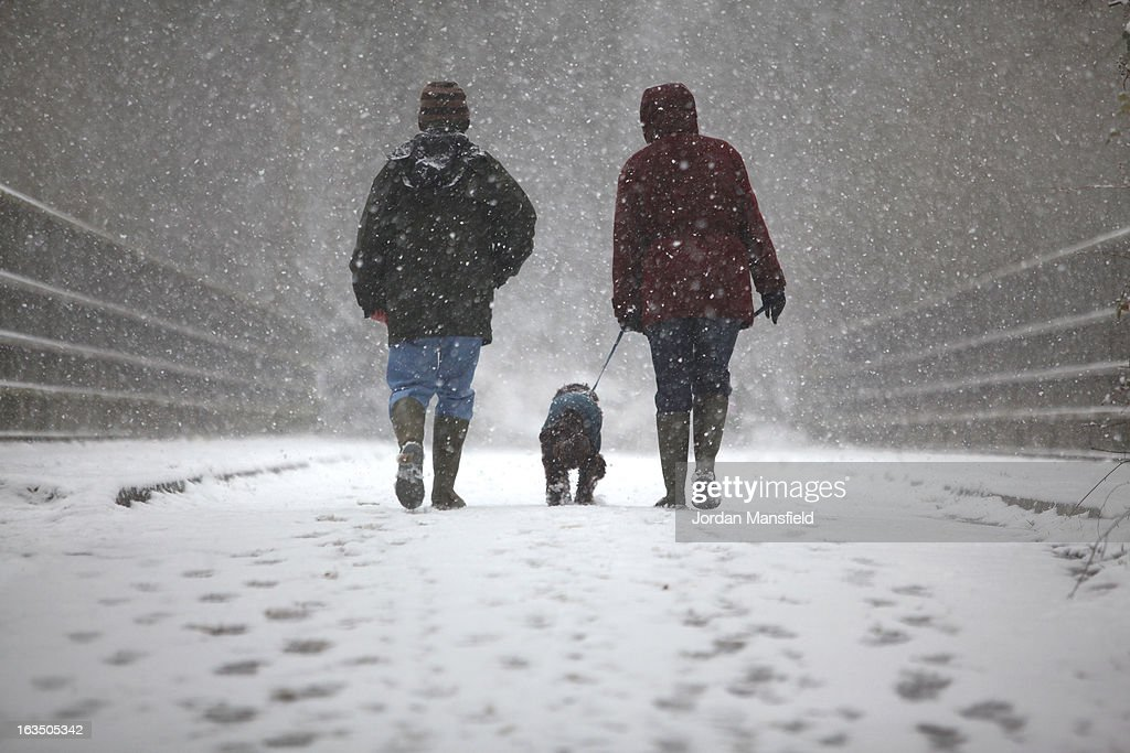 A couple walk their dog in the snow on March 11, 2013 in Crawley, United Kingdom. Snowfall is affecting Southern parts of the UK with yellow severe weather warnings issued for London and South-East England.