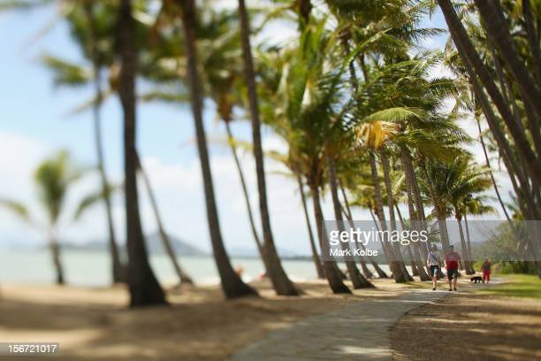 A couple walk through the palm trees on the beach on November 15 2012 in Palm Cove Australia Located in Far North Queensland the Cairns region is one...