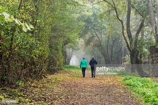 Couple walking along a tree lined footpath on a foggy autumn morning