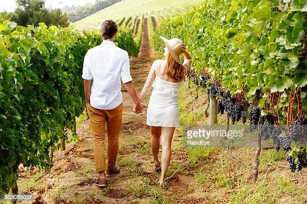 ビーチを散歩するカップルで、手を片手に、美しいブドウ園