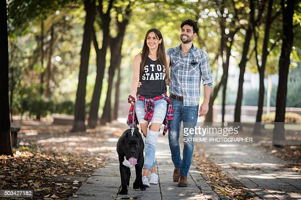 Couple walking Cane Corso in the park