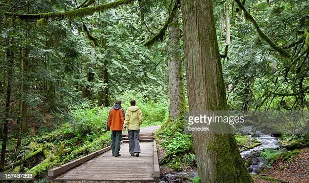 Couple walking in a lush forest