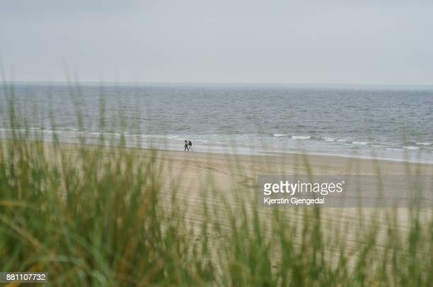 Couple walking on a beach by the North Sea