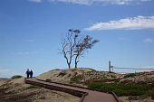 Couple walking on wooden path to beach