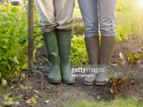 Couple wearing wellingtons in allotment : Stock Photo