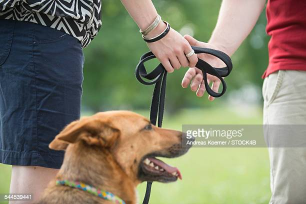 Couple with dog on leash outdoors, close-up
