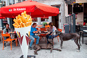 Couple with two Great Dane dogs enjoy Frites