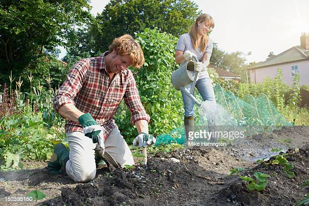 Couple working in allotment