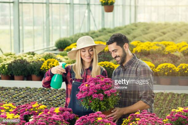 Couple Working Together In Greenhouse