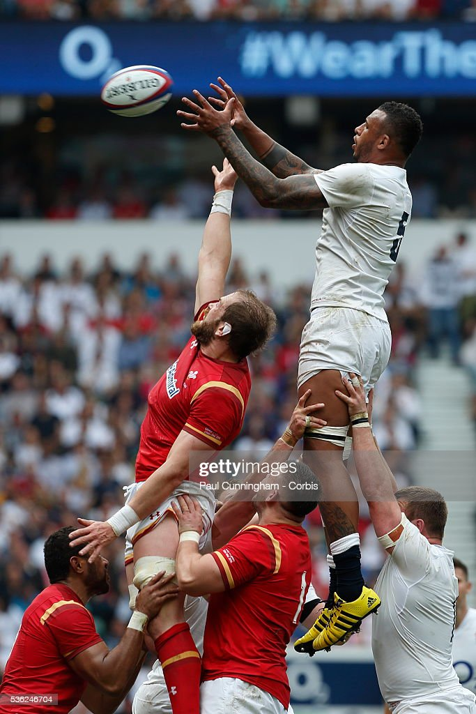 <a gi-track='captionPersonalityLinkClicked' href=/galleries/search?phrase=Courtney+Lawes&family=editorial&specificpeople=5385543 ng-click='$event.stopPropagation()'>Courtney Lawes</a> of England takes line out ball during the Old Mutual Wealth Cup between England and Wales at Twickenham Stadium on May 29, 2016 in London, England.