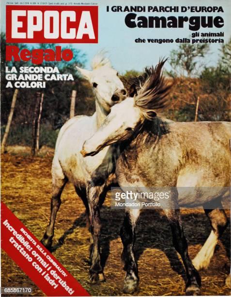 Cover of the magazine Epoca Two Camargue horses Camargue France 1974