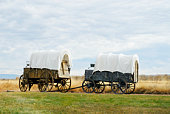 Covered wagons on dirt road in prairie
