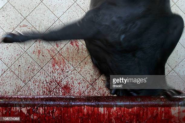 Cow in Slaughterhouse with Blood