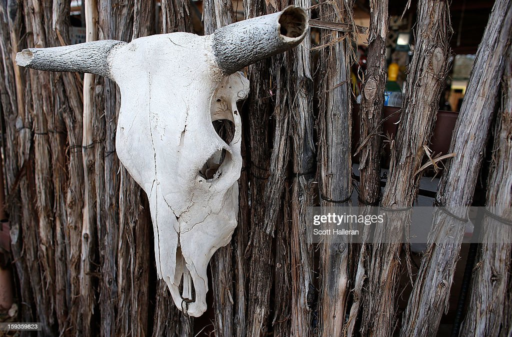 A cow skull is seen on December 24, 2012 in Marfa, Texas. Situated in West Texas, this town of just over 2000 residents has become a popular tourist destination.