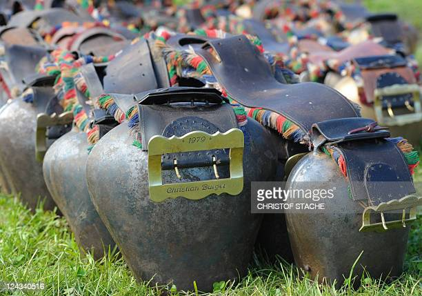 Cowbells are displayed after the socalled Allgaeuer Viehscheid cattle drive on September 9 2011 near the village of Oberstaufen Germain Alps During...