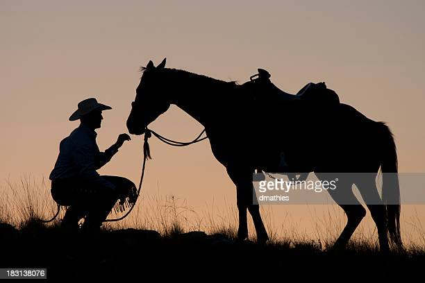 Cowboy and horse in silhouette