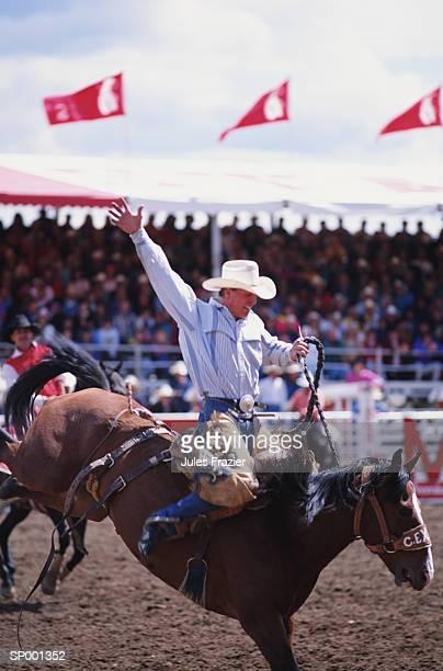 Cowboy at a Rodeo