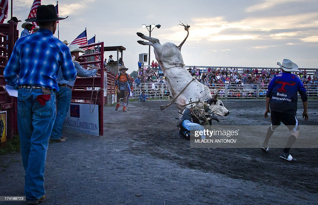 A cowboy falls from a bull during the 'Battle of the Beast' bull riding competition at J Bar W ranch in Union Bridge, Maryland, on July 20, 2013. Professional bull riding is one of the most dangerous, fastest growing extreme spectator sport going across America.