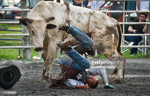 A cowboy falls from the bull during the 'Battle of the Beast' bull riding competition at J Bar W ranch in Union Bridge Maryland on July 20 2013...