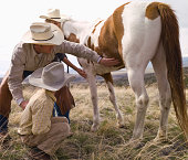 Cowboy teaching kids how to check health of horse.