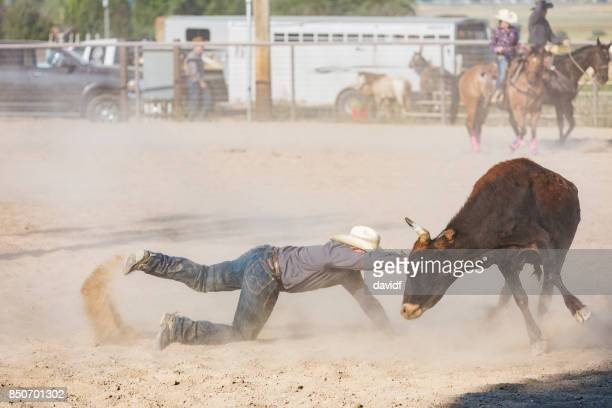 Cowboy Hanging on to Steer Horn