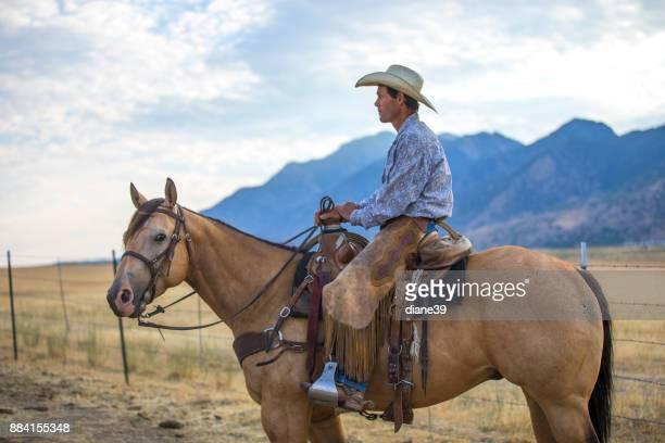 Cowboy in a Horse