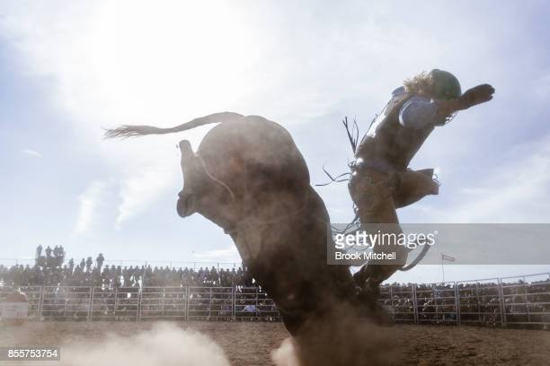 A cowboy is bucked off his bull during the Deni Rodeo at the 2017 Deni Ute Muster on September 30 2017 in Deniliquin Australia The annual Deniliquin...