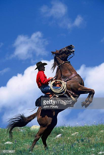 Cowboy on rearing horse, side view