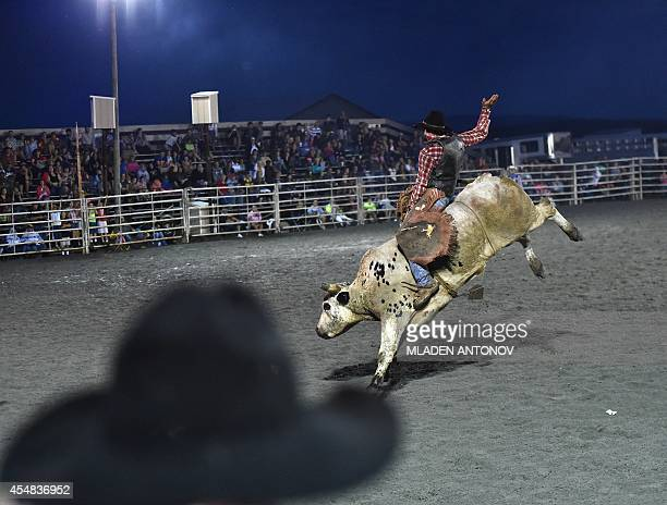 A cowboy rides a bull during the 'Battle of the Beast' bull riding competition at J Bar W ranch in Union Bridge Maryland on September 06 2014...