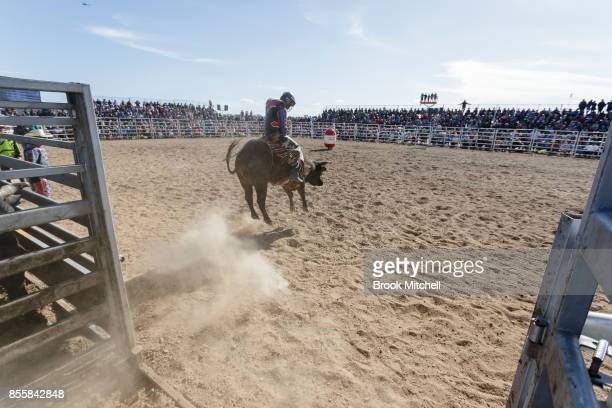 A cowboy rides a bull during the Deni Rodeo at the 2017 Deni Ute Muster on September 30 2017 in Deniliquin Australia The annual Deniliquin Ute Muster...