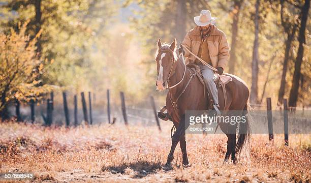 Cowboy rides horse at sunrise on crisp fall morning