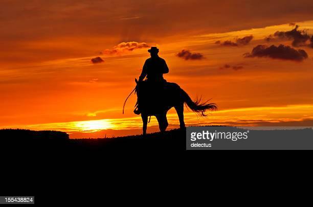 Cowboy no pôr do sol passeia