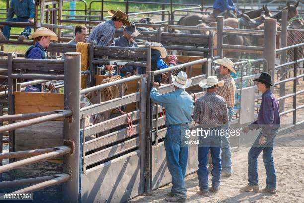 Cowboy Riding a Bucking Bronco at a Rodeo