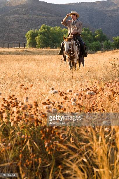 A cowboy riding a horse through a field