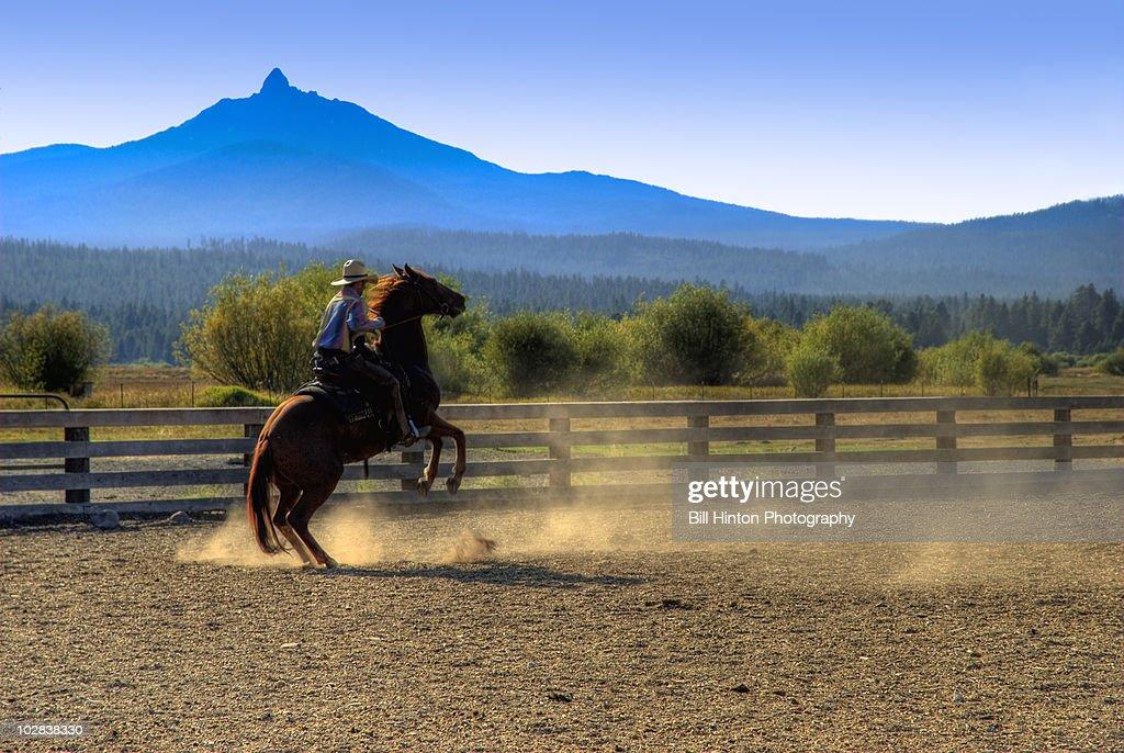 Cowboy riding bucking horse : Stock Photo