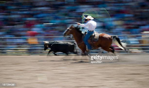Cowboys calf roping at a rodeo in Montana