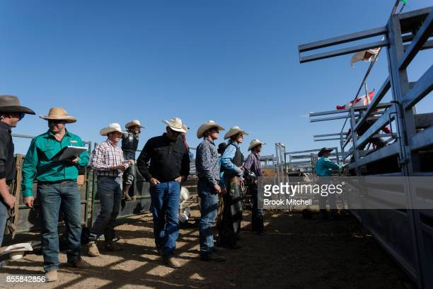 Cowboys wait for their turn in the Rodeo during the 2017 Deni Ute Muster on September 30 2017 in Deniliquin Australia The annual Deniliquin Ute...