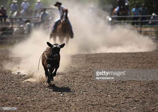 Cowgirl Break Away  Roper